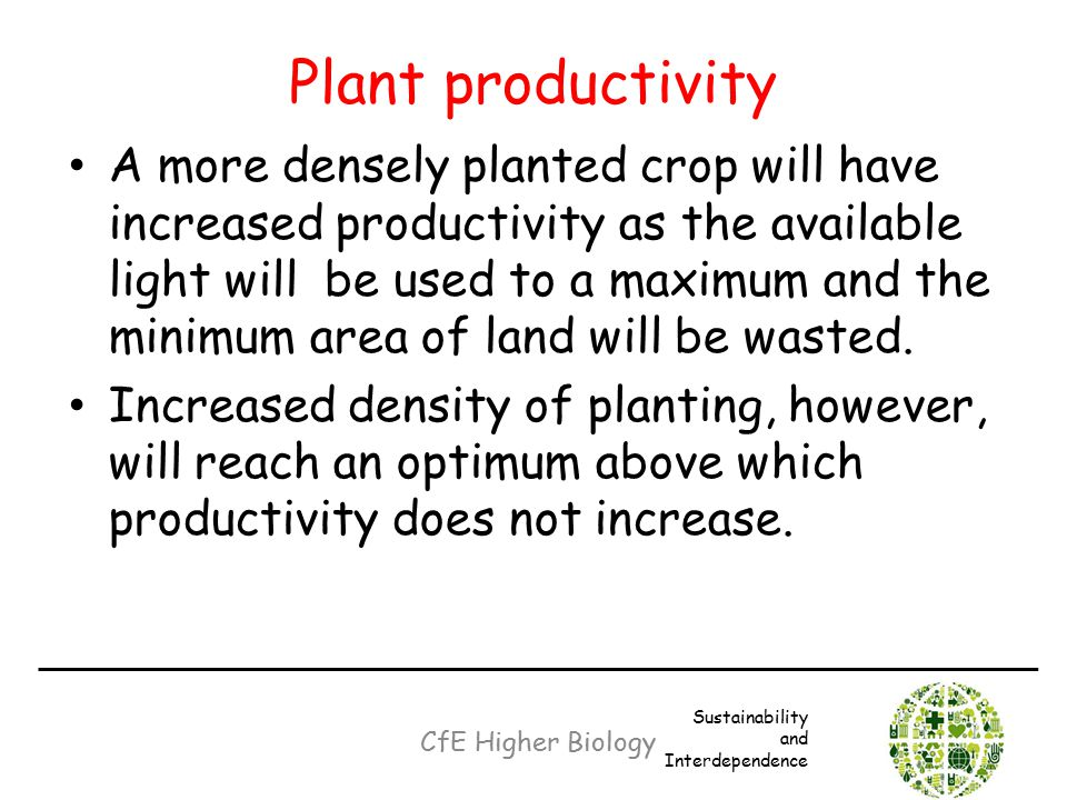 Plant productivity A more densely planted crop will have increased productivity as the available light will be used to a maximum and the minimum area
