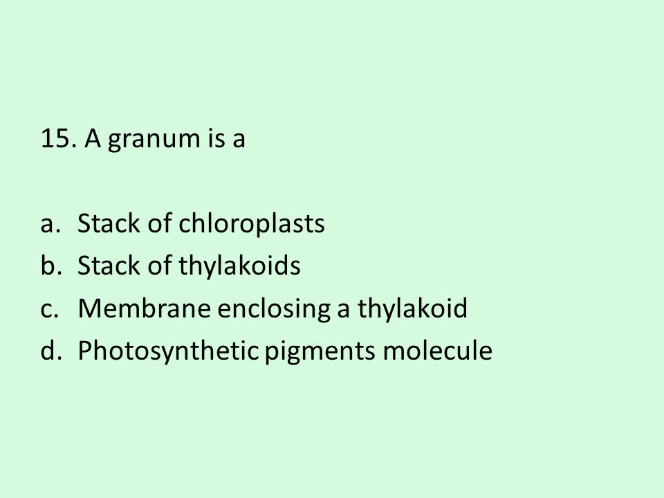 15. A granum is a a.Stack of chloroplasts b.Stack of thylakoids c.Membrane enclosing a thylakoid d.Photosynthetic pigments molecule