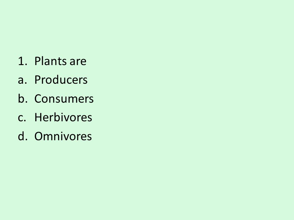 1.Plants are a.Producers b.Consumers c.Herbivores d.Omnivores