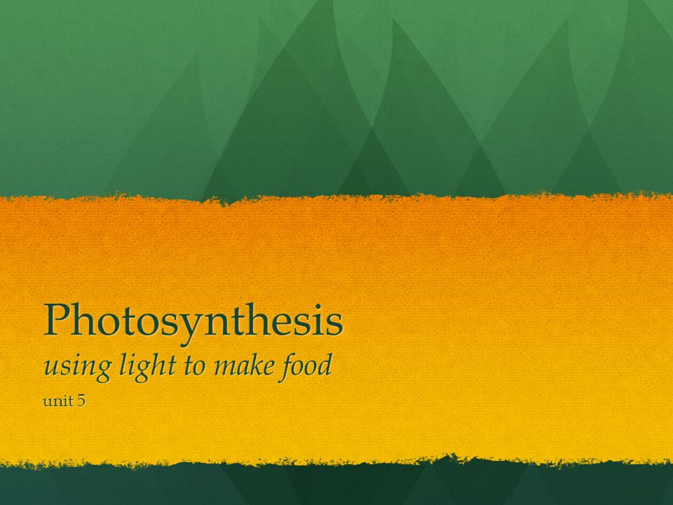 Photosynthesis using light to make food unit 5