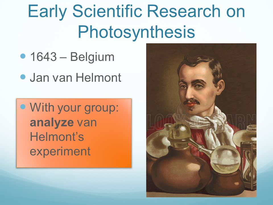 Early Scientific Research on Photosynthesis 1643 – Belgium Jan van Helmont With your group: analyze van Helmont's experiment