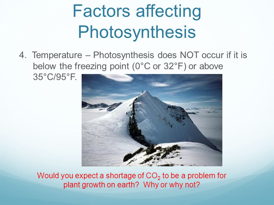 Factors affecting Photosynthesis 4.