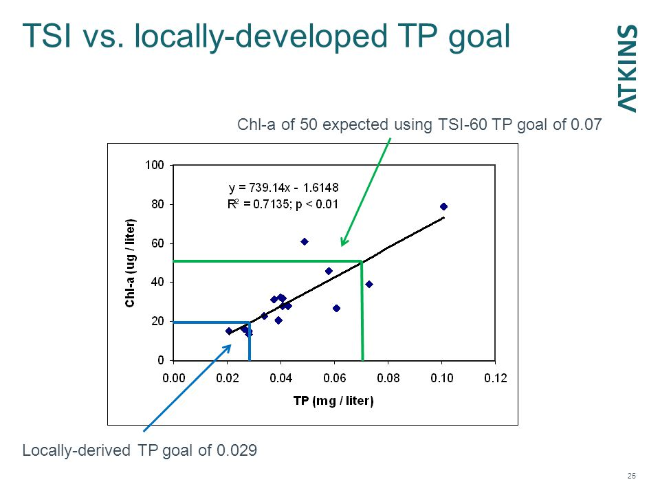 TSI vs. locally-developed TP goal 25 Locally-derived TP goal of 0.029 Chl-a of 50 expected using TSI-60 TP goal of 0.07