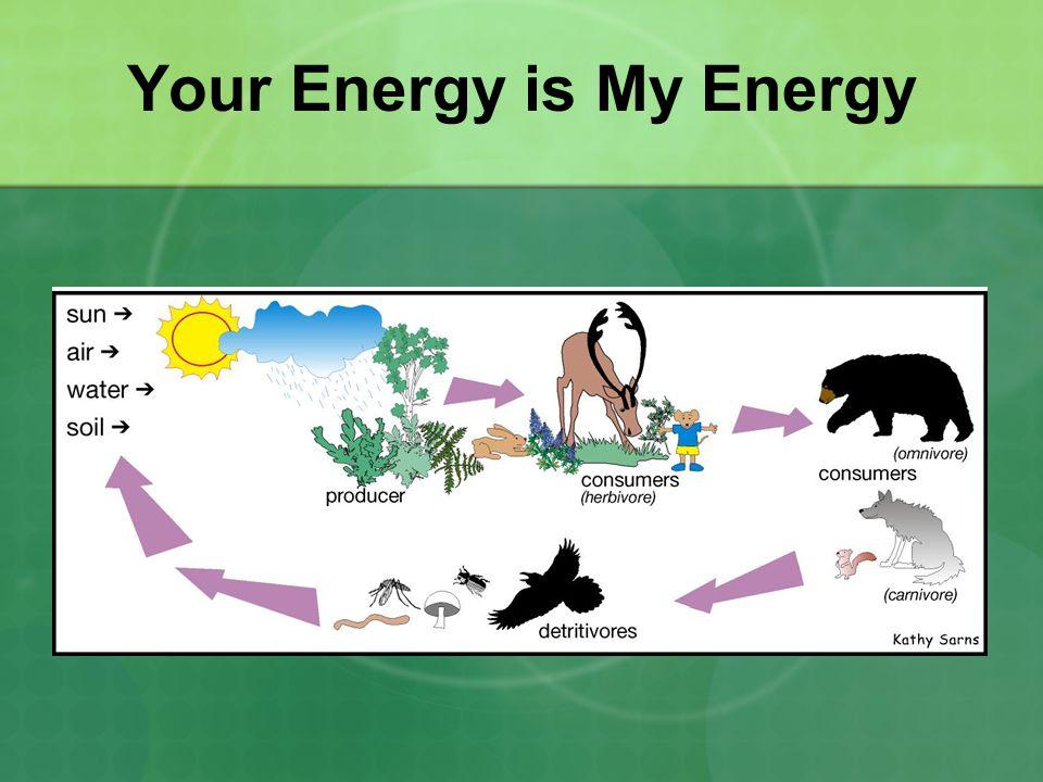 Your Energy is My Energy