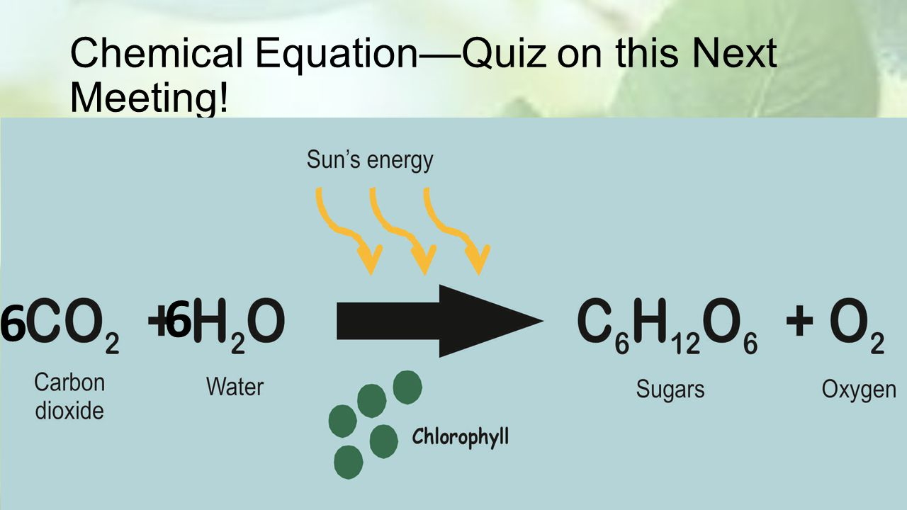 Chemical Equation—Quiz on this Next Meeting! 6 6