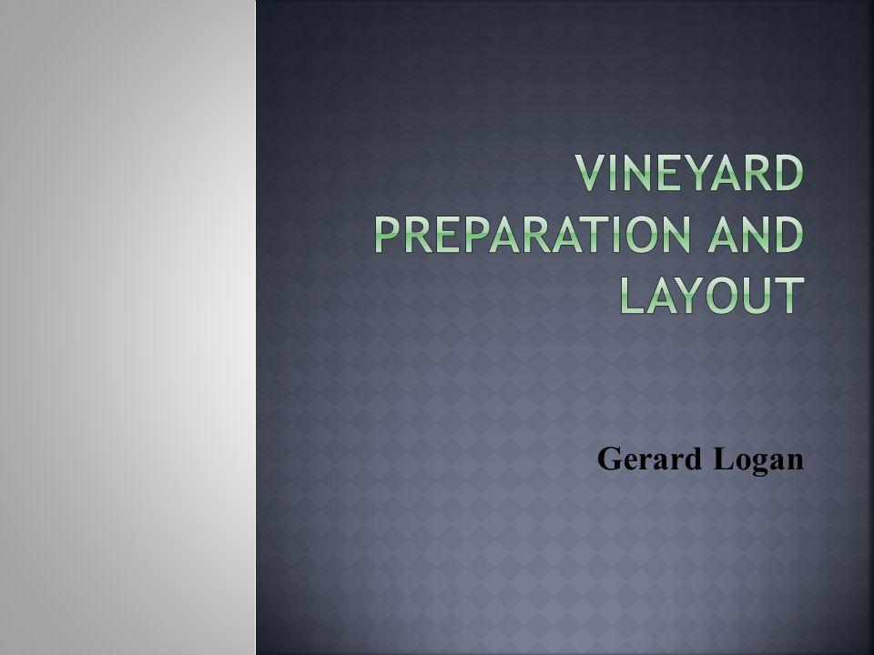 Gerard Logan