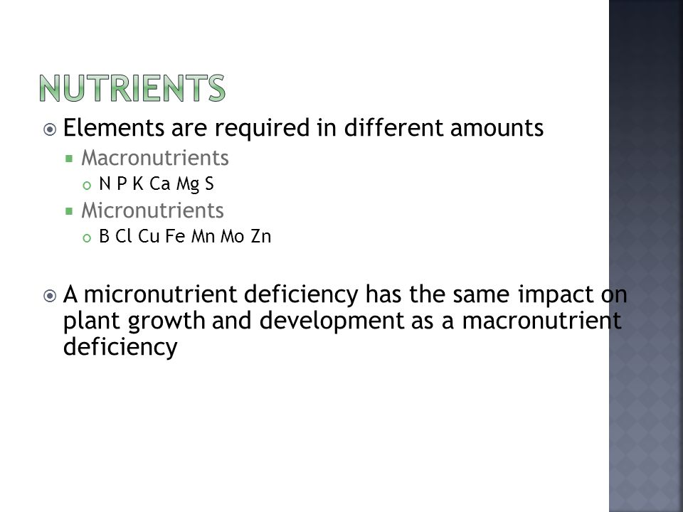  Elements are required in different amounts  Macronutrients N P K Ca Mg S  Micronutrients B Cl Cu Fe Mn Mo Zn  A micronutrient deficiency has the same impact on plant growth and development as a macronutrient deficiency