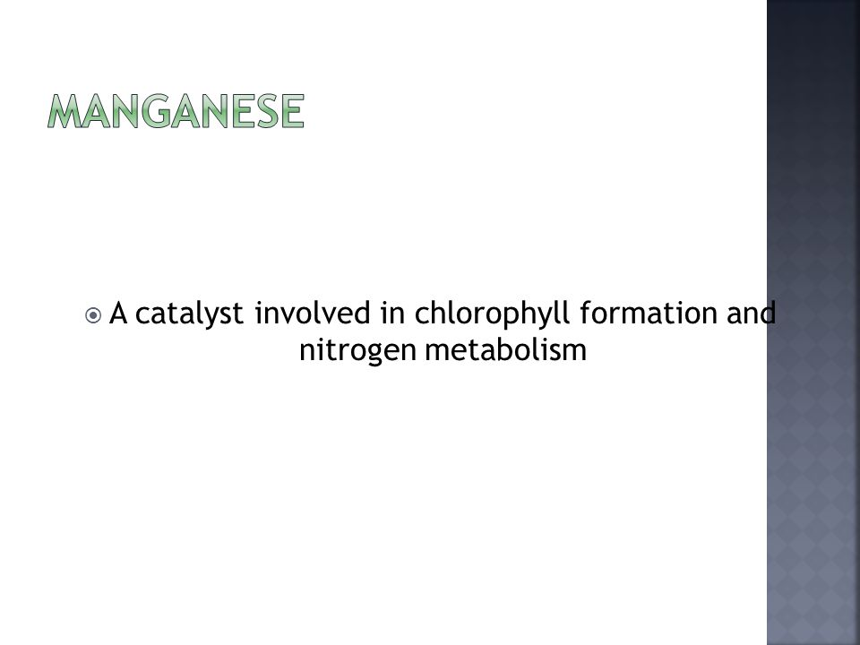  A catalyst involved in chlorophyll formation and nitrogen metabolism
