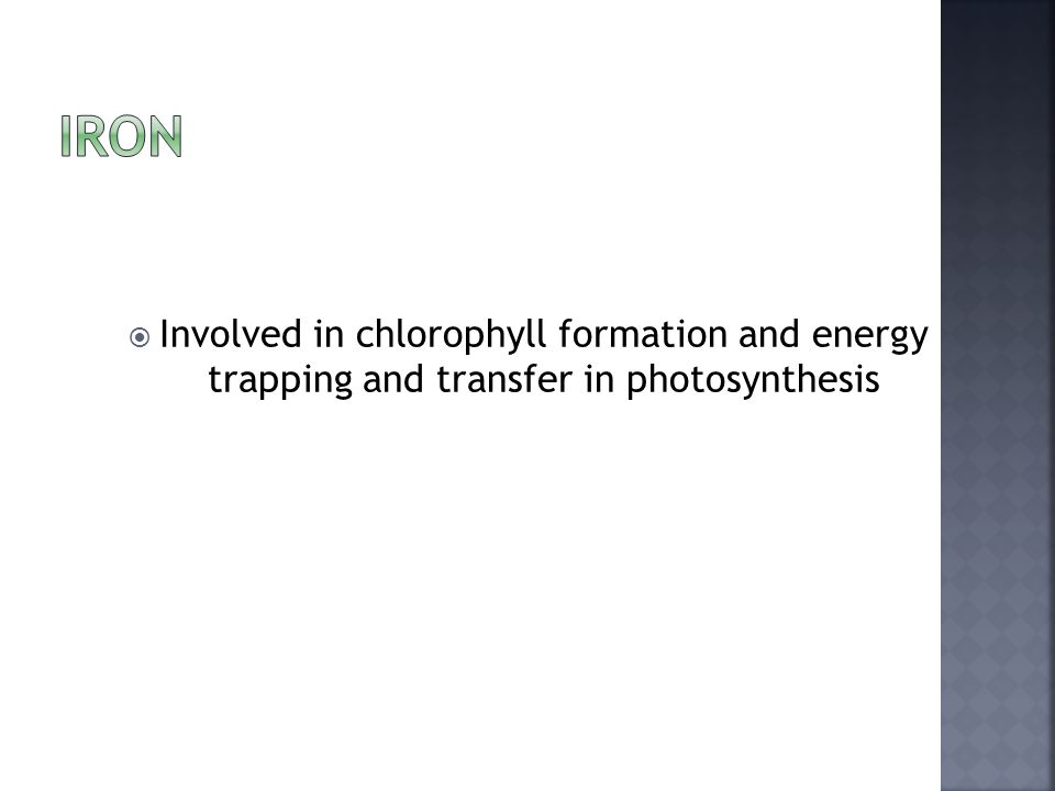  Involved in chlorophyll formation and energy trapping and transfer in photosynthesis