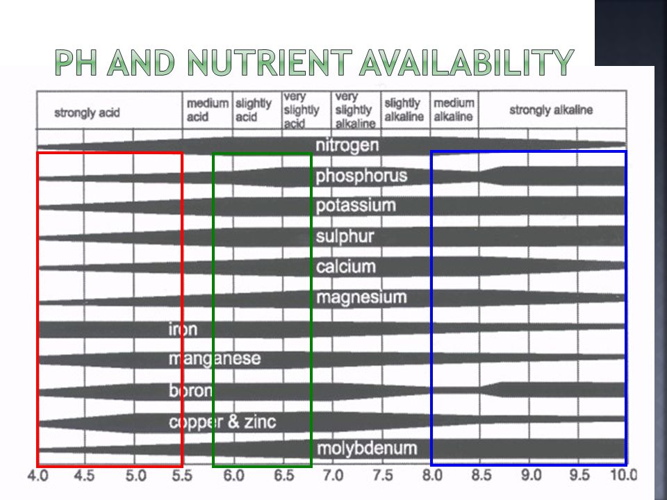  Picture of ph and nut aval. include boxes from soil acidity lecture