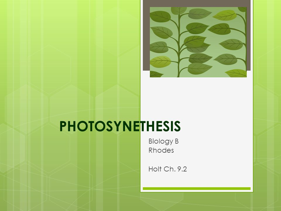 PHOTOSYNETHESIS Biology B Rhodes Holt Ch. 9.2