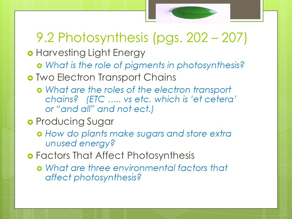 9.2 Photosynthesis (pgs.