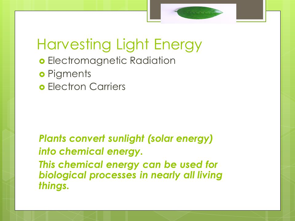 Harvesting Light Energy  Electromagnetic Radiation  Pigments  Electron Carriers Plants convert sunlight (solar energy) into chemical energy.