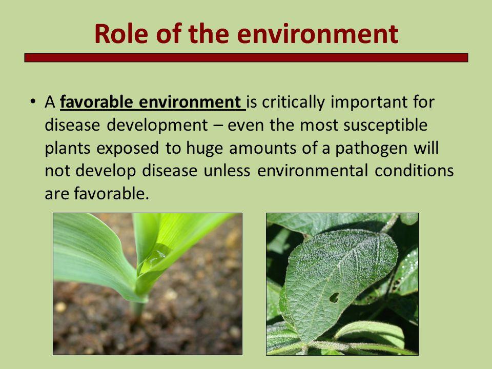 The Disease Triangle Environment Pathogen Host