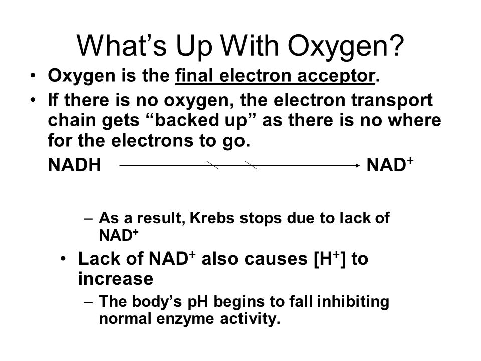 What's Up With Oxygen.Oxygen is the final electron acceptor.