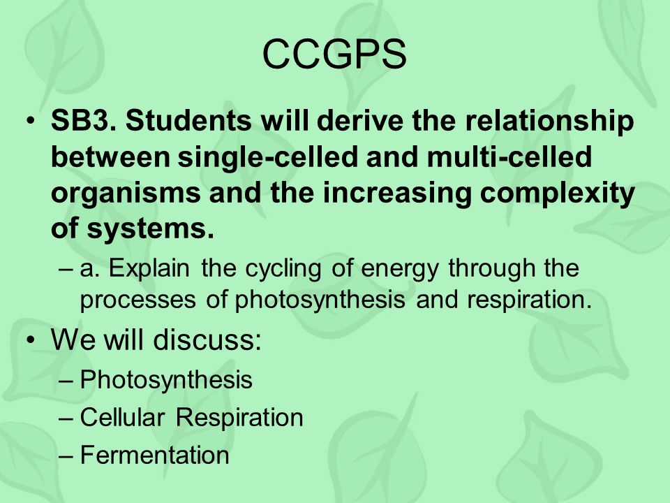 CCGPS SB3. Students will derive the relationship between single-celled and multi-celled organisms and the increasing complexity of systems. –a. Explai