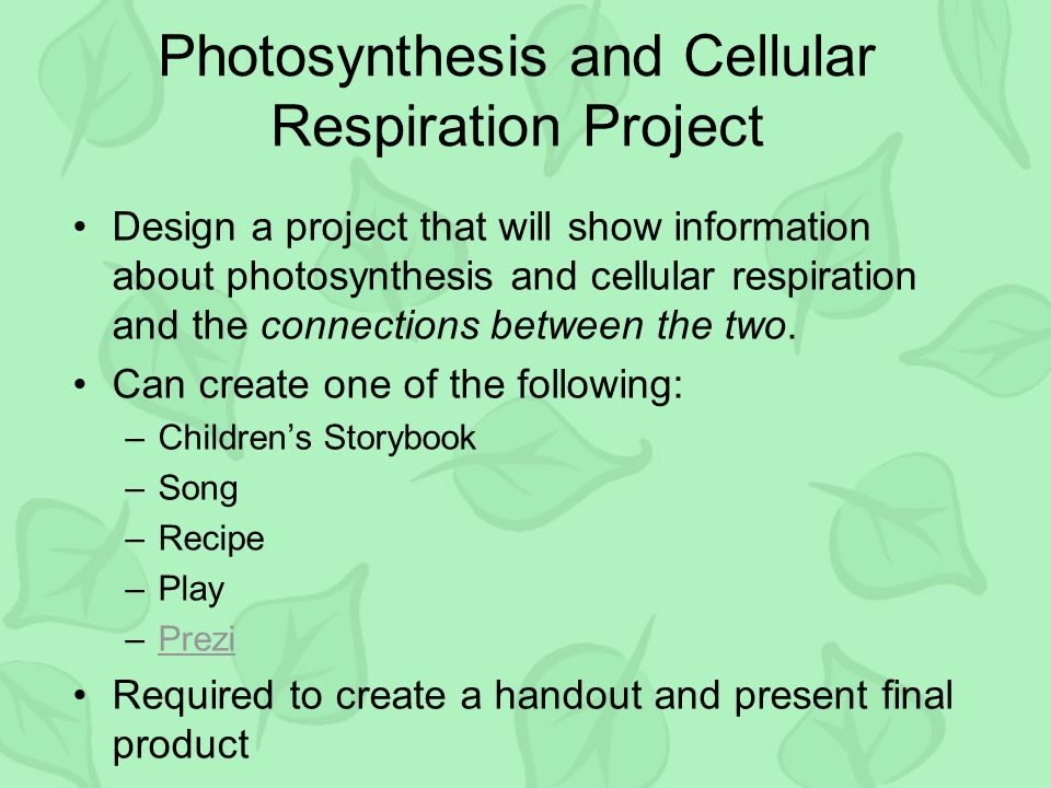 Photosynthesis and Cellular Respiration Project Design a project that will show information about photosynthesis and cellular respiration and the connections between the two.