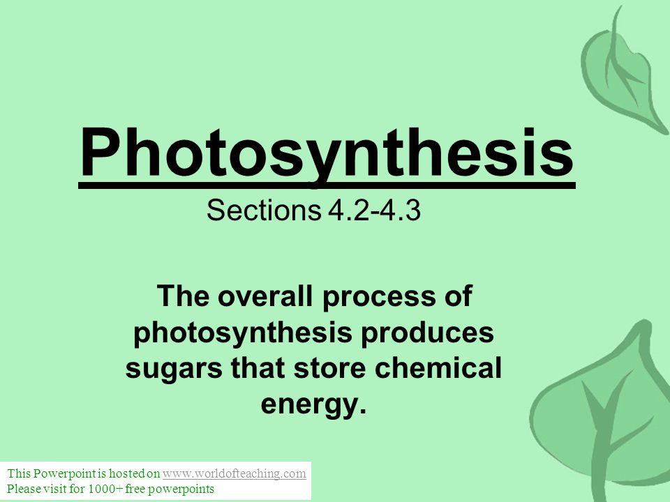 Photosynthesis Sections 4.2-4.3 The overall process of photosynthesis produces sugars that store chemical energy. This Powerpoint is hosted on www.wor