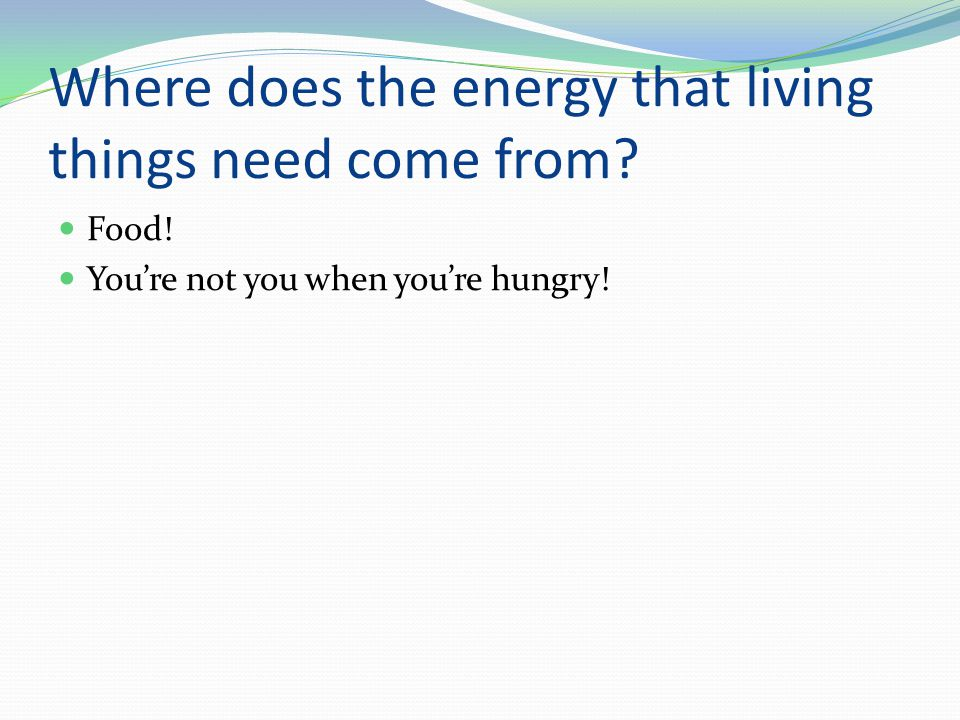 Where does the energy that living things need come from.