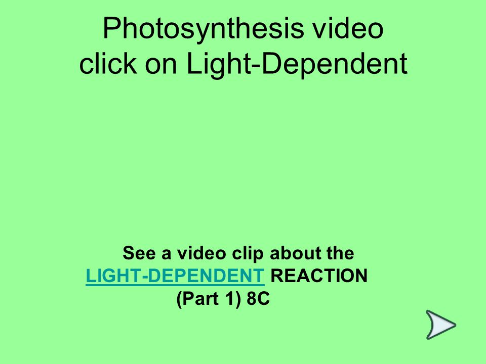 Photosynthesis video click on Light-Dependent See a video clip about the LIGHT-DEPENDENT REACTION (Part 1) 8CLIGHT-DEPENDENT