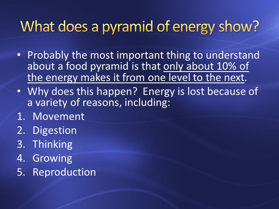 Probably the most important thing to understand about a food pyramid is that only about 10% of the energy makes it from one level to the next.