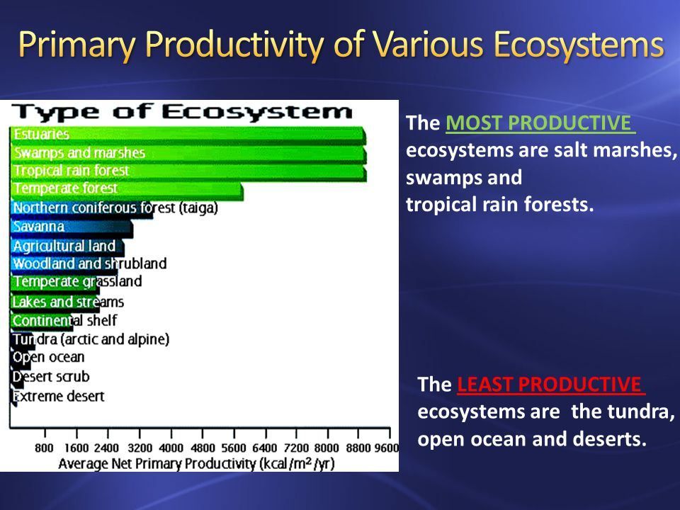The MOST PRODUCTIVE ecosystems are salt marshes, swamps and tropical rain forests.