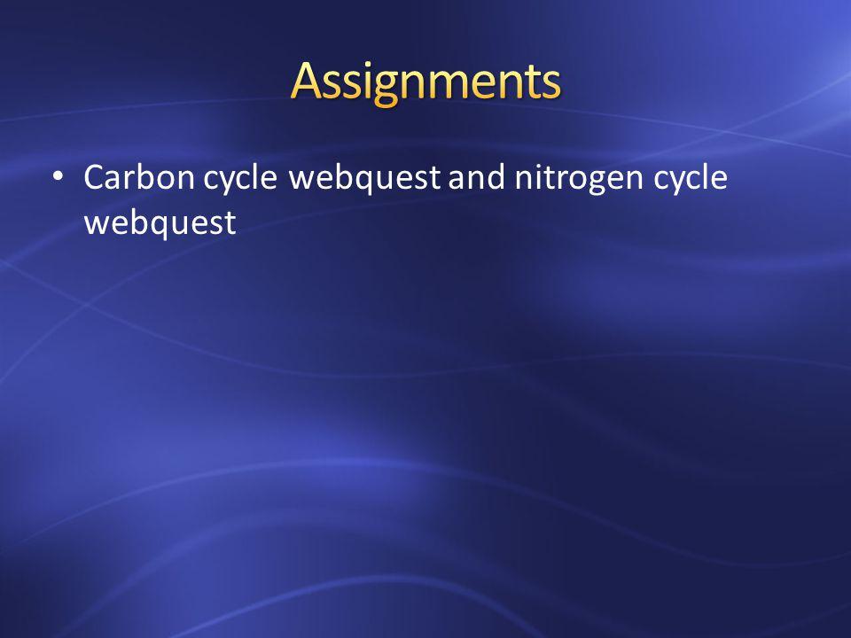 Carbon cycle webquest and nitrogen cycle webquest