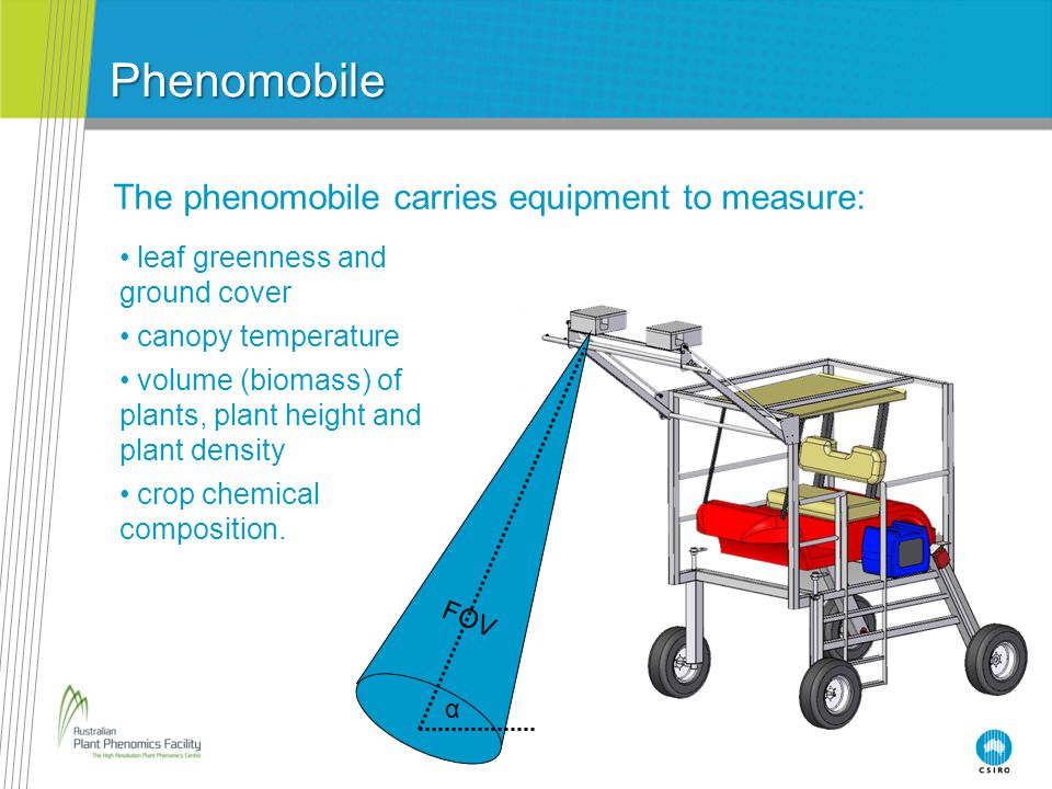 Phenomobile FOV α leaf greenness and ground cover canopy temperature volume (biomass) of plants, plant height and plant density crop chemical composition.