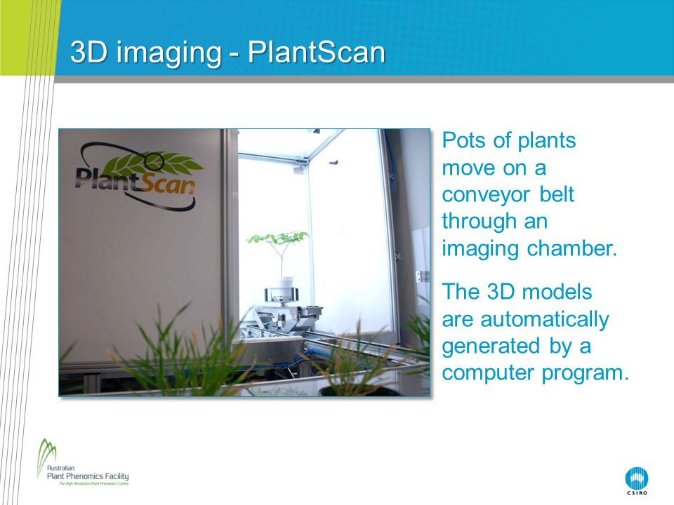 3D imaging - PlantScan Pots of plants move on a conveyor belt through an imaging chamber.