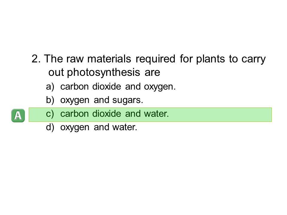 2. The raw materials required for plants to carry out photosynthesis are a)carbon dioxide and oxygen. b)oxygen and sugars. c)carbon dioxide and water.