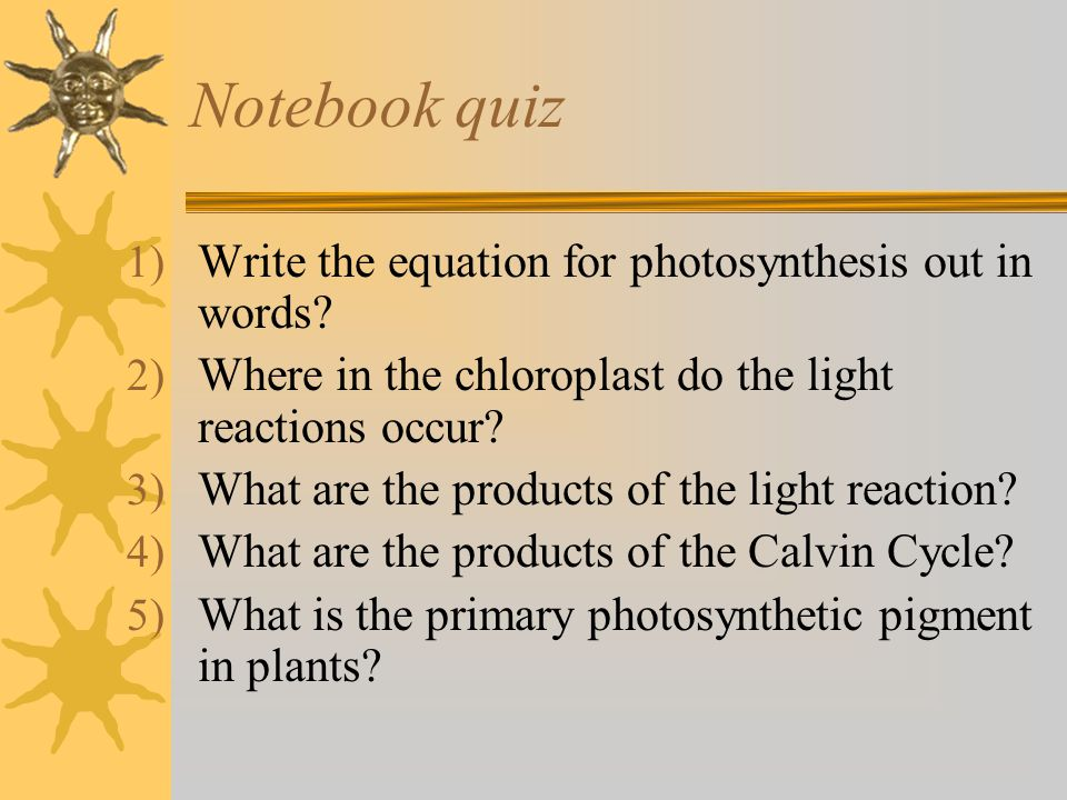 Notebook quiz 1) Write the equation for photosynthesis out in words? 2) Where in the chloroplast do the light reactions occur? 3) What are the product