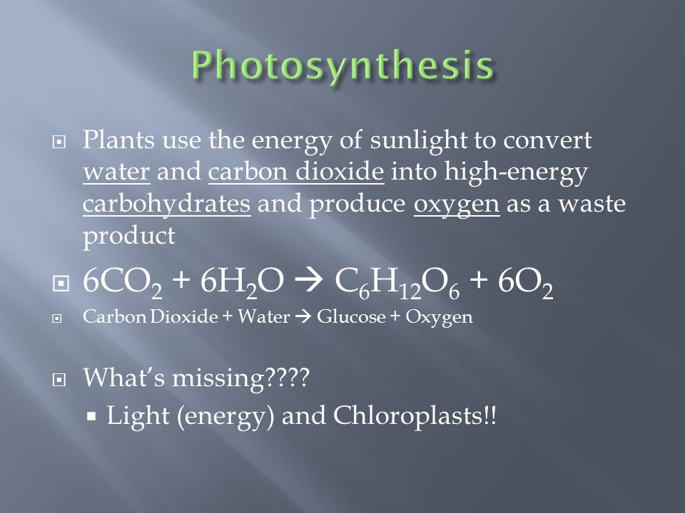  Plants use the energy of sunlight to convert water and carbon dioxide into high-energy carbohydrates and produce oxygen as a waste product  6CO 2 + 6H 2 O  C 6 H 12 O 6 + 6O 2  Carbon Dioxide + Water  Glucose + Oxygen  What's missing .