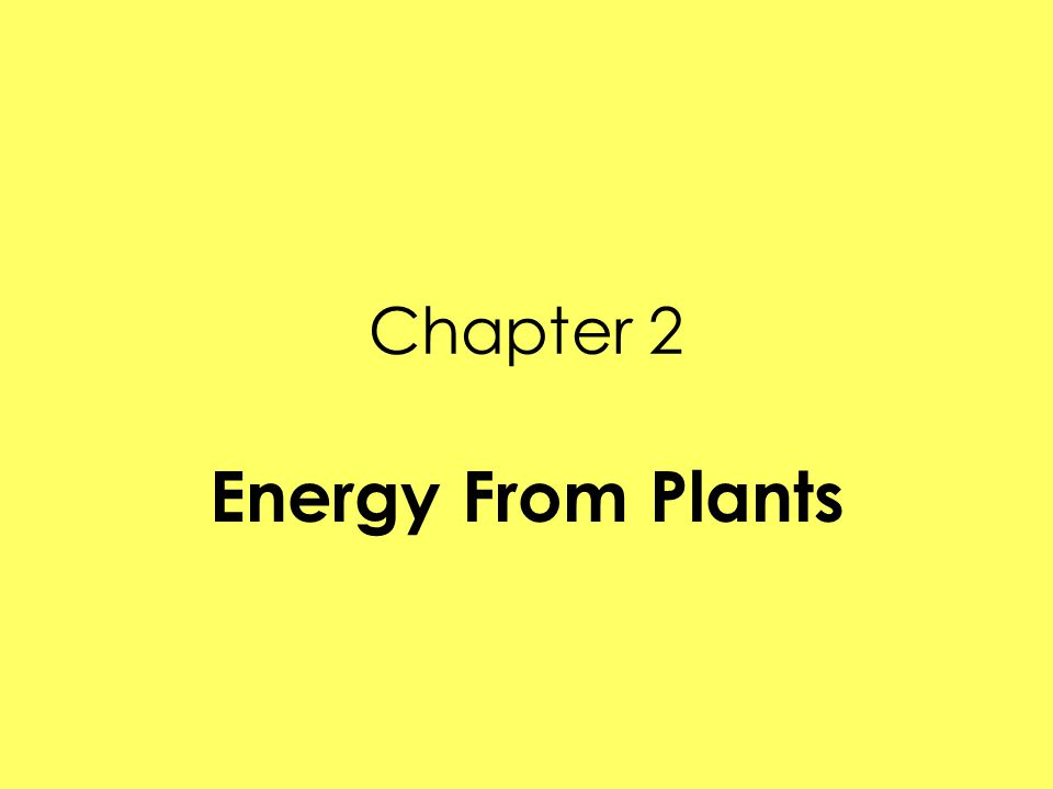 Lesson 1- What are plants' characteristics.Plants are made of small building blocks called cells.