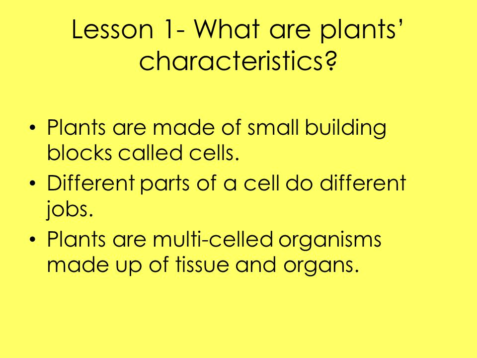 How plants make food Plants need sunlight and water in order to live, grow, and reproduce.