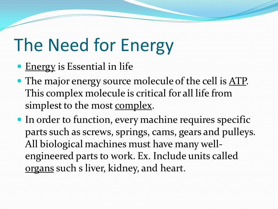The Need for Energy Energy is Essential in life The major energy source molecule of the cell is ATP. This complex molecule is critical for all life fr