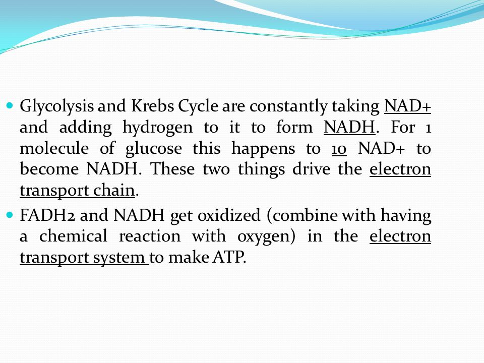 Glycolysis and Krebs Cycle are constantly taking NAD+ and adding hydrogen to it to form NADH.
