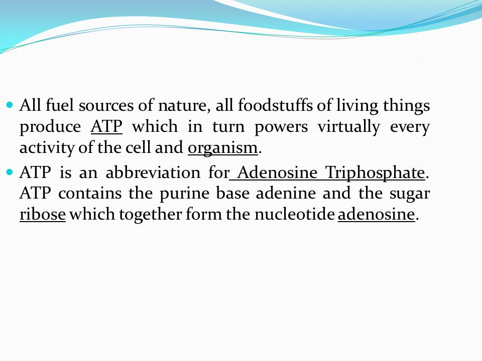All fuel sources of nature, all foodstuffs of living things produce ATP which in turn powers virtually every activity of the cell and organism. ATP is