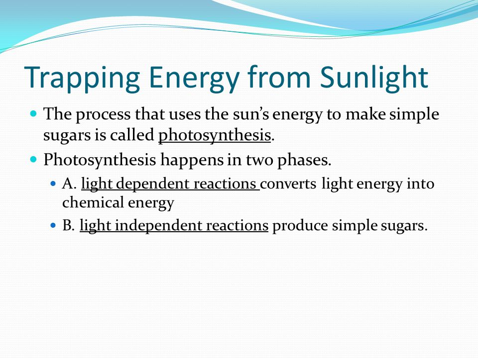 Trapping Energy from Sunlight The process that uses the sun's energy to make simple sugars is called photosynthesis. Photosynthesis happens in two pha