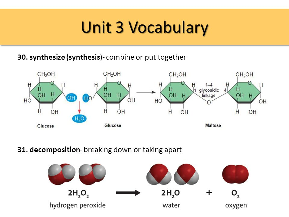 Unit 3 Vocabulary 30. synthesize (synthesis)- combine or put together 31.