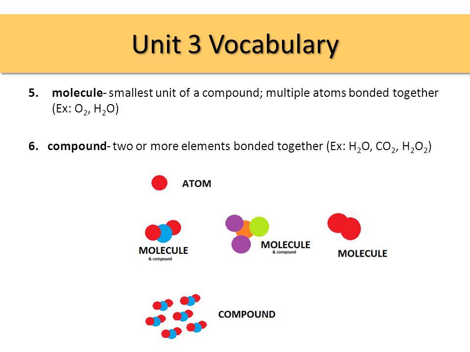Unit 3 Vocabulary 53.poly- prefix meaning many; ex: polypeptide 54.