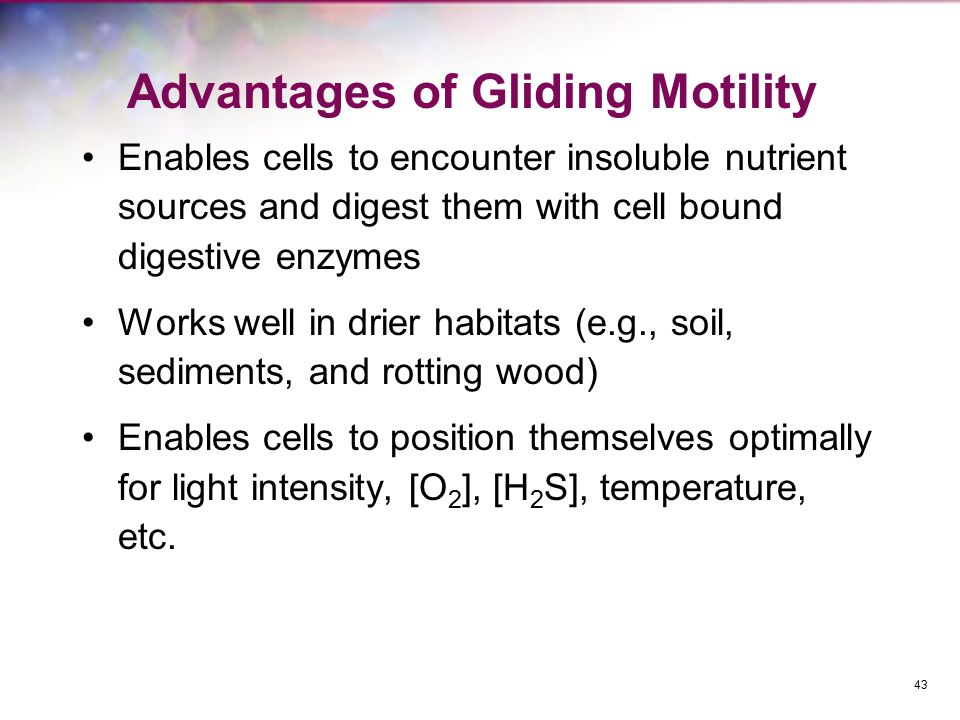Advantages of Gliding Motility Enables cells to encounter insoluble nutrient sources and digest them with cell bound digestive enzymes Works well in d