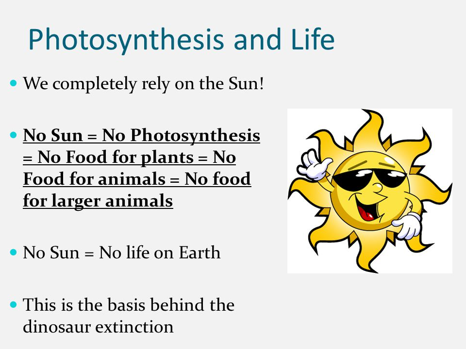 Photosynthesis and Life We completely rely on the Sun! No Sun = No Photosynthesis = No Food for plants = No Food for animals = No food for larger anim