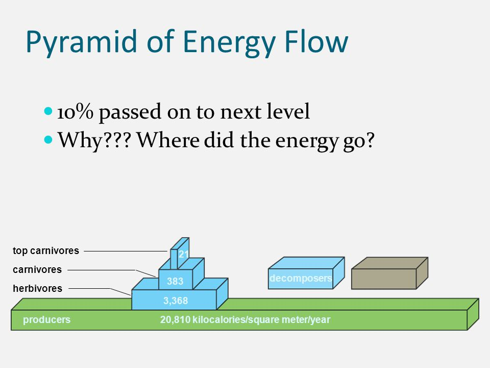 Pyramid of Energy Flow 10% passed on to next level Why??? Where did the energy go? 21 383 3,368 20,810 kilocalories/square meter/year top carnivores c