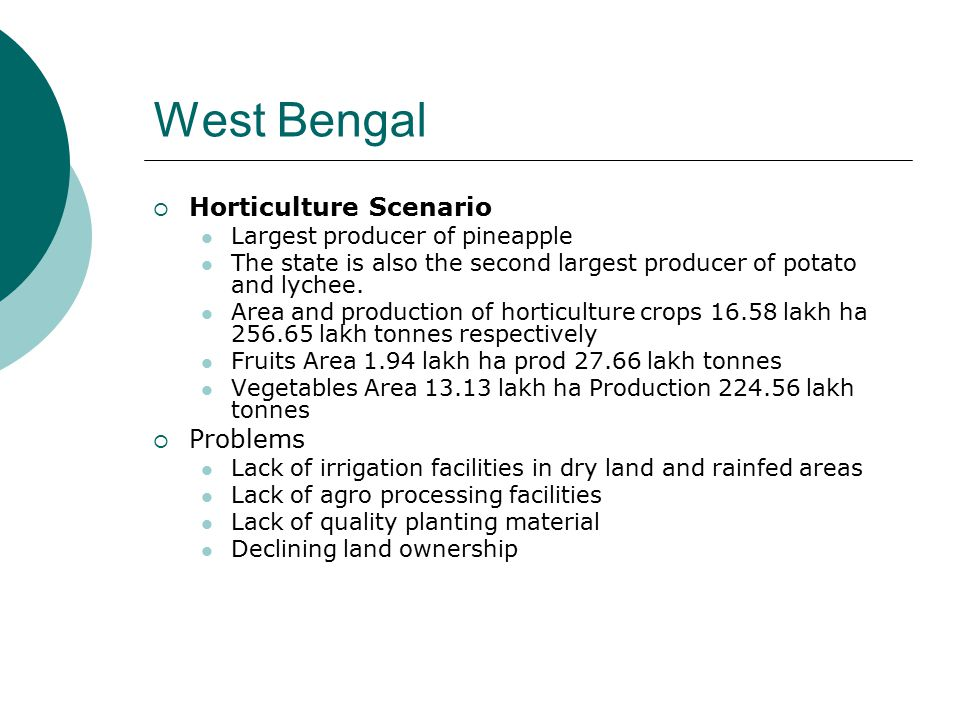 West Bengal  Horticulture Scenario Largest producer of pineapple The state is also the second largest producer of potato and lychee. Area and product