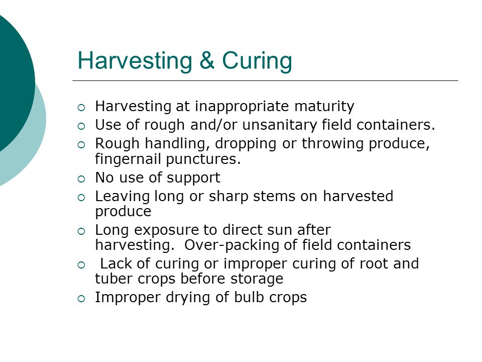 Harvesting & Curing  Harvesting at inappropriate maturity  Use of rough and/or unsanitary field containers.  Rough handling, dropping or throwing p