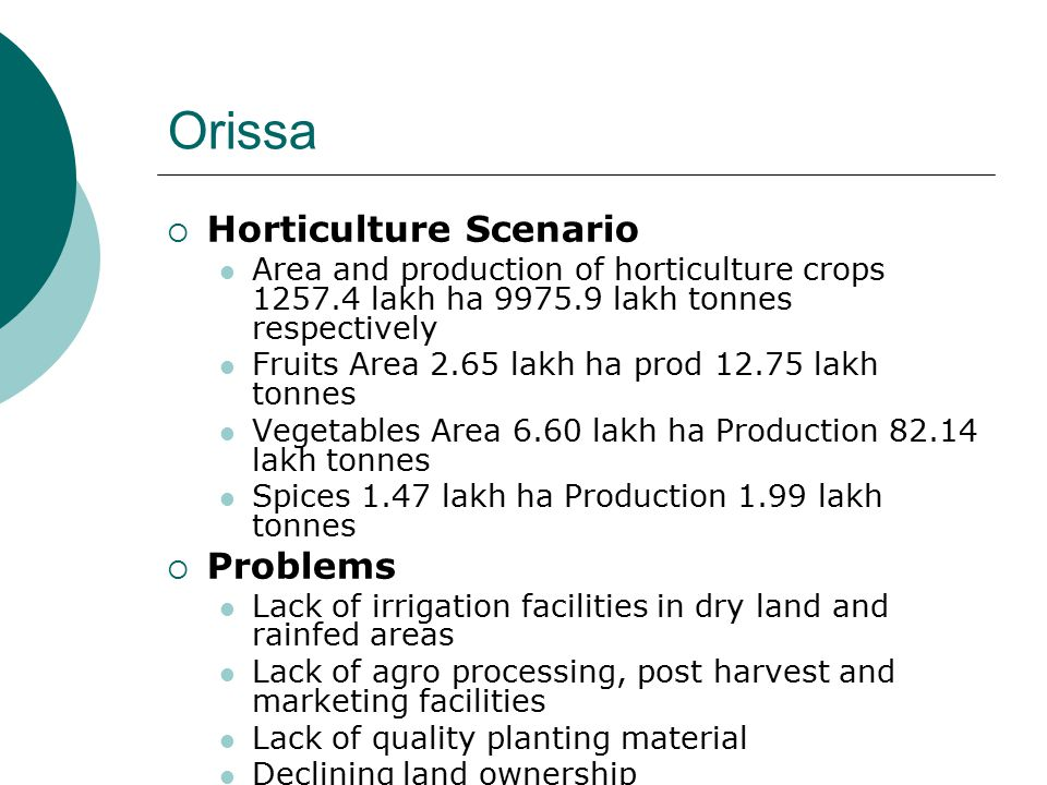Orissa  Horticulture Scenario Area and production of horticulture crops 1257.4 lakh ha 9975.9 lakh tonnes respectively Fruits Area 2.65 lakh ha prod 12.75 lakh tonnes Vegetables Area 6.60 lakh ha Production 82.14 lakh tonnes Spices 1.47 lakh ha Production 1.99 lakh tonnes  Problems Lack of irrigation facilities in dry land and rainfed areas Lack of agro processing, post harvest and marketing facilities Lack of quality planting material Declining land ownership