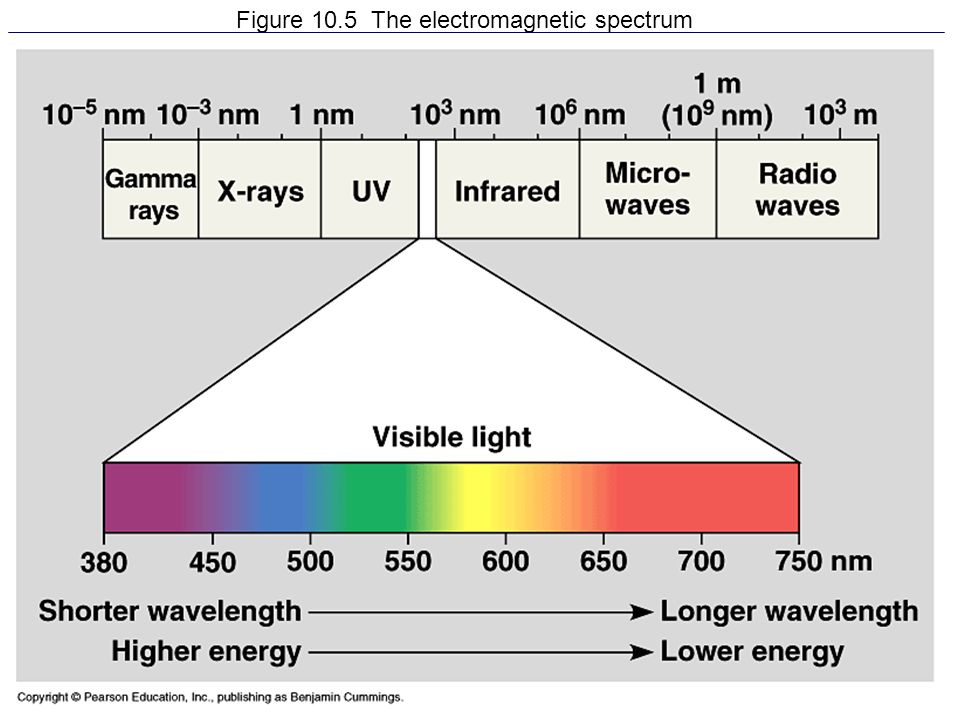 Figure 10.5 The electromagnetic spectrum