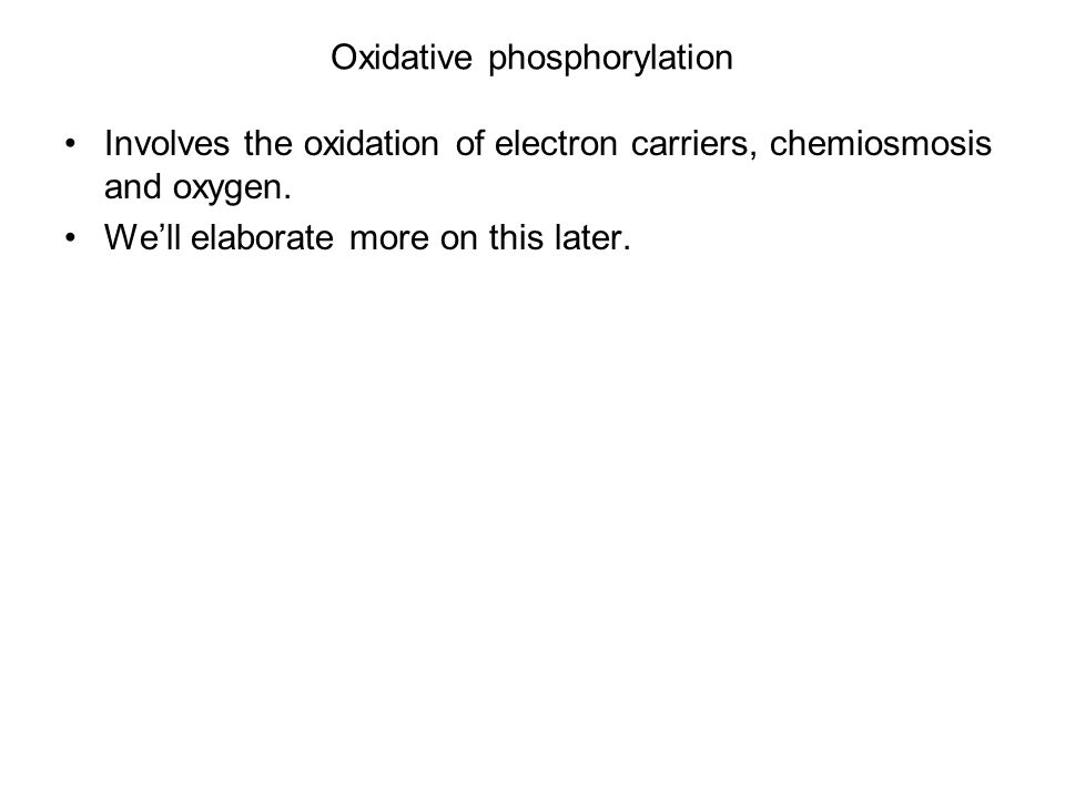 Oxidative phosphorylation Involves the oxidation of electron carriers, chemiosmosis and oxygen.