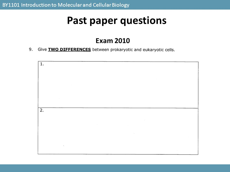 BY1101 Introduction to Molecular and Cellular Biology Exam 2010 Past paper questions