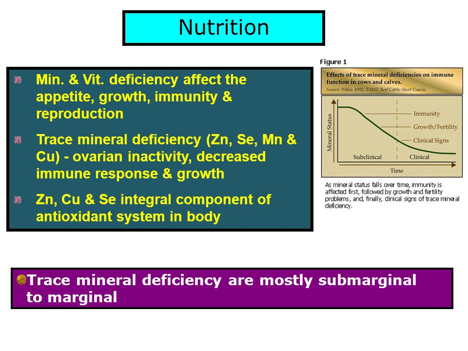 Nutrition Min. & Vit. deficiency affect the appetite, growth, immunity & reproduction Trace mineral deficiency (Zn, Se, Mn & Cu) - ovarian inactivity,